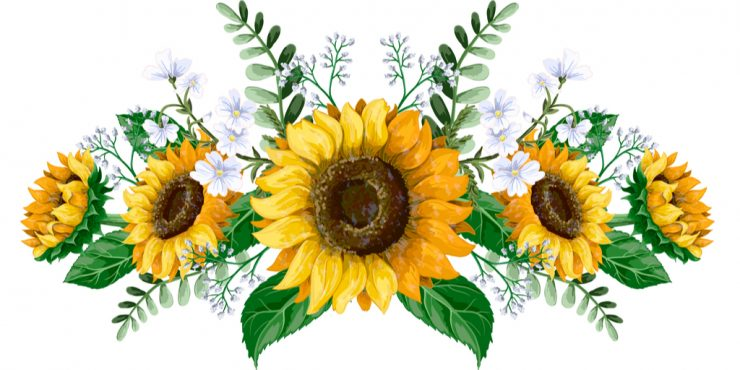 The Sun Flowers Connection to Litha e1617470934719